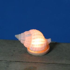 TL 504 Seashell Light